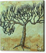 Spikey Tree No. 2 Acrylic Print