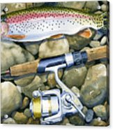 Spin Trout Acrylic Print by Mark Jennings