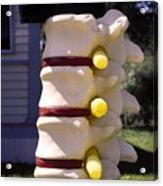 Spine Mailbox Acrylic Print