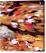 Spinning Leaves Of Autumn Acrylic Print