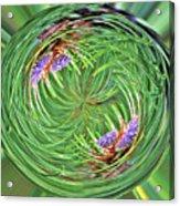 Spinning Pinecone Acrylic Print