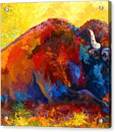 Spirit Brother - Bison Acrylic Print by Marion Rose