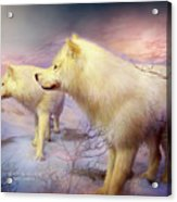 Spirit Of The White Wolf Acrylic Print