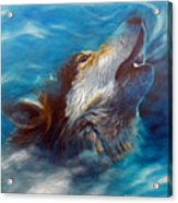 Spirit Of The Wolf Acrylic Print