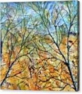 Spirit Trees 7 Acrylic Print