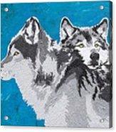 Spirited Pack Acrylic Print