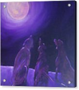 Spirits In The Night Acrylic Print