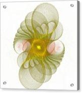 Spiro-girations Acrylic Print