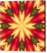 Spiro#4 Acrylic Print