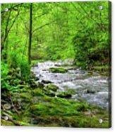 Spivey Creek Acrylic Print