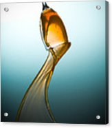 Splash-006 Acrylic Print