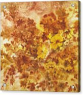 Splash Of Autumn Color Acrylic Print