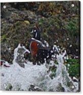 Splashed At Haystack Rock Acrylic Print