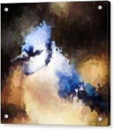 Splatter Art - Blue Jay Acrylic Print