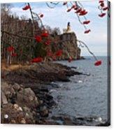Split Rock Berries Acrylic Print