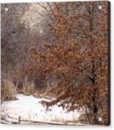Splitrail Winter Acrylic Print