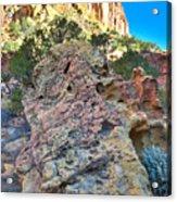 Sponge Boulder Acrylic Print