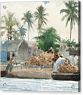 Sponge Fisherman In The Bahama Acrylic Print by Winslow Homer