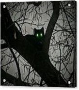 Spooky Cat Acrylic Print