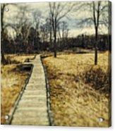 Spooky Hike On The Appalachian Trail Acrylic Print