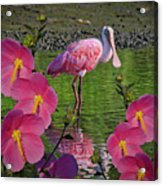 Spoonbill Through The Flowers Acrylic Print