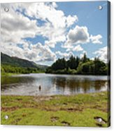 Spot The Swimming Dog In Derwnt Water Lake Acrylic Print