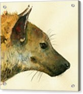 Spotted Hyena Animal Art Acrylic Print