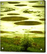 Spotted Lake Acrylic Print