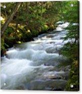 Sprague Creek Glacier National Park 2 Acrylic Print