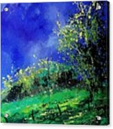 Spring 459060 Acrylic Print