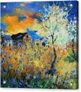 Spring 67 Acrylic Print