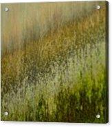 Spring Abstract Acrylic Print