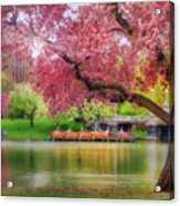 Spring Afternoon In The Boston Public Garden - Boston Swan Boats Acrylic Print