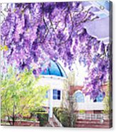 Spring At City Hall Acrylic Print