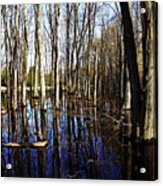 Spring At The Pond Acrylic Print