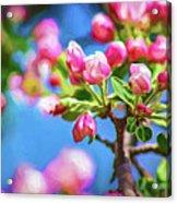 Spring Awakening 2 - Paint Acrylic Print