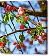 Spring Awakening 3 - Paint Acrylic Print