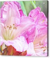 Spring Bling Acrylic Print