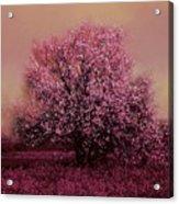Spring Bounty Acrylic Print