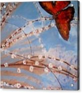 Spring Butterfly Acrylic Print