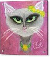 Spring Cat Acrylic Print
