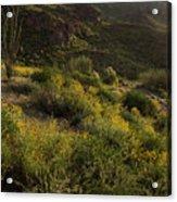 Spring Color Carpet Acrylic Print