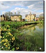 Spring Daffodils, Ramsey Village Pond, Cambridgeshire, England Acrylic Print