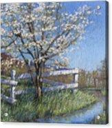 Spring Fare Acrylic Print