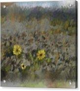 Spring Fever Acrylic Print