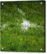 Spring Field Memphis Acrylic Print
