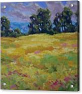 Spring Field Acrylic Print