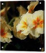 Spring Floral Acrylic Print by David Lane