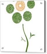 Spring Flower Acrylic Print by Frank Tschakert
