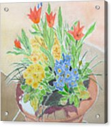 Spring Flowers In Pot Acrylic Print